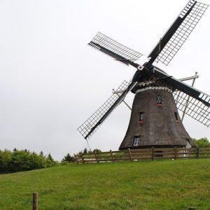 Mill Ameland